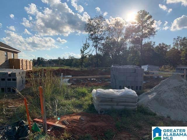 440 Creek Side Loop Road, Tuscaloosa, AL 35404 (MLS #1301447) :: LIST Birmingham