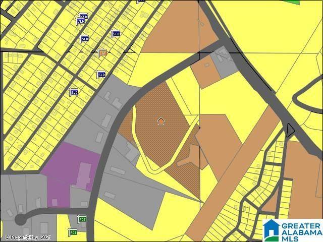 1285 Raimund Muscoda Road, Bessemer, AL 35020 (MLS #1301512) :: Kellie Drozdowicz Group