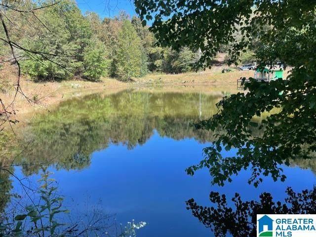 11485 County Road 82 #11485, Woodland, AL 36280 (MLS #1301543) :: Howard Whatley