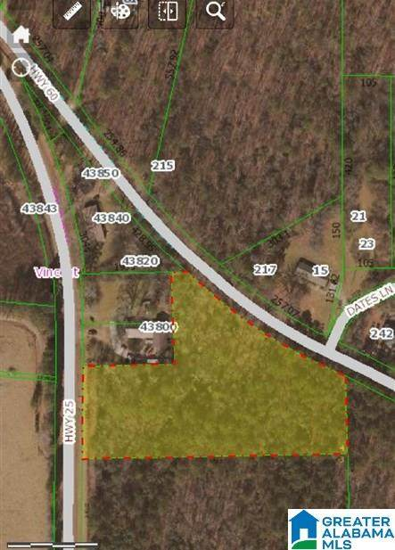 0 Highway 25 #1, Vincent, AL 35178 (MLS #1301870) :: Lux Home Group