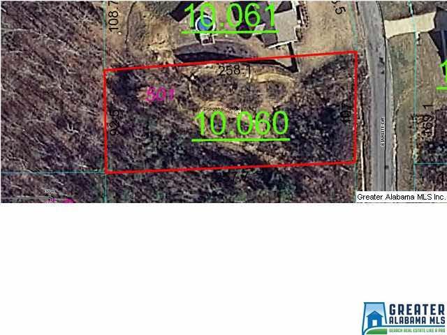 675 Starlite Dr #501, Margaret, AL 35120 (MLS #774828) :: The Mega Agent Real Estate Team at RE/MAX Advantage