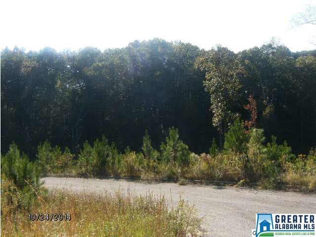 1407-b Mcconnell Ln 2B, Mount Olive, AL 35117 (MLS #775459) :: Josh Vernon Group