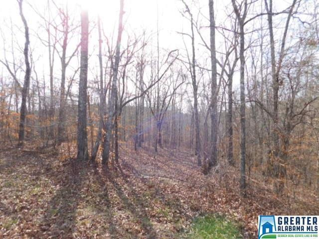 Harbour Point Co Rd 214 Lot 37, Wedowee, AL 36278 (MLS #775639) :: Brik Realty