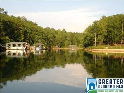 29 Ginhouse Point Lot 29, Wedowee, AL 36278 (MLS #779291) :: Gusty Gulas Group