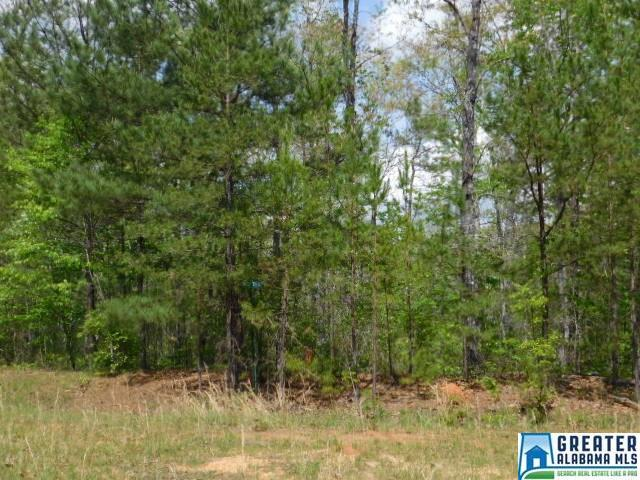 Pointe South Dr Lot 60, Phase 2, Wedowee, AL 36278 (MLS #782403) :: LIST Birmingham