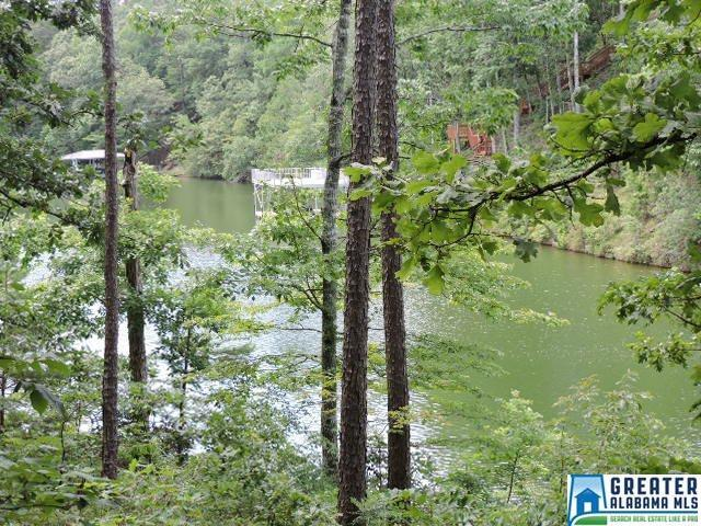 27 Wild Turkey Ln #27, Wedowee, AL 36278 (MLS #788084) :: Gusty Gulas Group