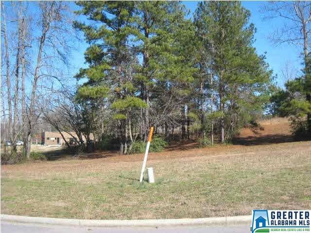 560 Simmons Dr, Trussville, AL 35173 (MLS #793790) :: Howard Whatley