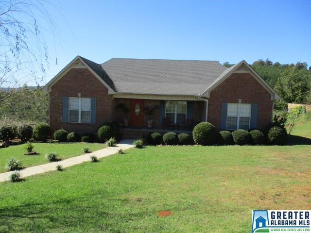 905 Ransome Dr, Oneonta, AL 35121 (MLS #798625) :: A-List Real Estate Group