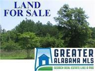 000 Pinedale Shores 356, 604, 676, , Ashville, AL 35953 (MLS #798913) :: Josh Vernon Group