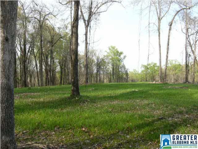0 Spring Creek Rd 30 AC, Montevallo, AL 35115 (MLS #799598) :: LIST Birmingham