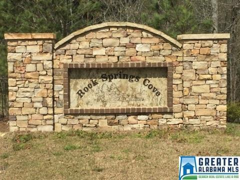 0 Springs Cove Rd #23, Warrior, AL 35180 (MLS #801143) :: Brik Realty
