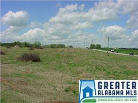 Hwy 31 #1, Jemison, AL 35085 (MLS #801158) :: Josh Vernon Group
