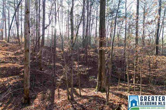 6474 Chalkville Rd 3 Lots, Trussville, AL 35173 (MLS #802434) :: Howard Whatley
