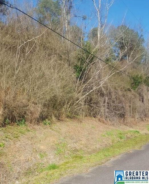 751 Hagbush Rd #55, Irondale, AL 35210 (MLS #803365) :: Brik Realty