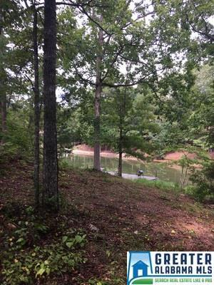 Lane Branch Rd None, Wedowee, AL 36278 (MLS #806691) :: The Mega Agent Real Estate Team at RE/MAX Advantage