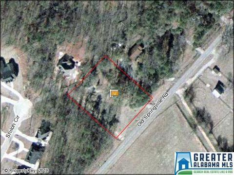 7228 Old Springville Rd #0, Pinson, AL 35126 (MLS #809260) :: Brik Realty
