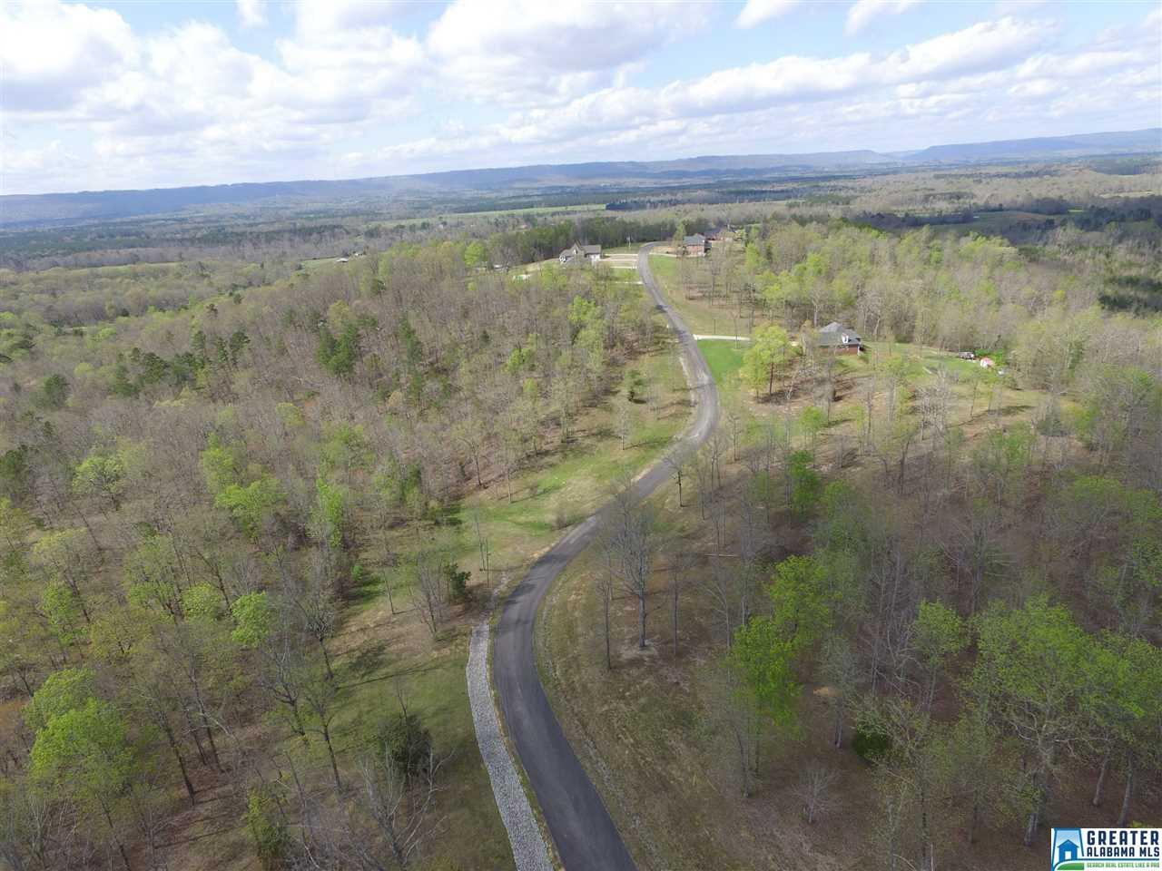 523 Stone Ridge Dr - Photo 1
