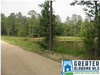 Lot 5B Chelsea Ridge Ln 5B, Chelsea, AL 35043 (MLS #817282) :: LIST Birmingham