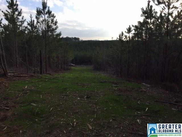 Crossover Rd #0, Cropwell, AL 35054 (MLS #819154) :: Gusty Gulas Group