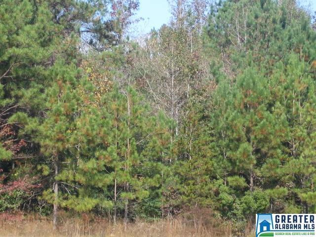 Co Rd 48 N None, Jemison, AL 35085 (MLS #820594) :: Josh Vernon Group