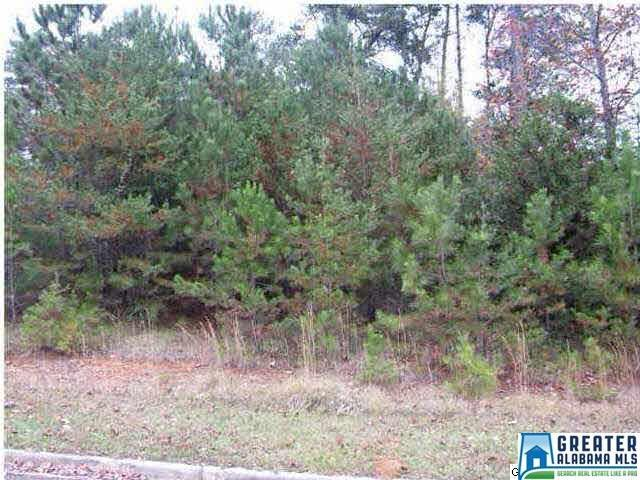 3889 Belmont Rd #0, Irondale, AL 35210 (MLS #820736) :: Williamson Realty Group