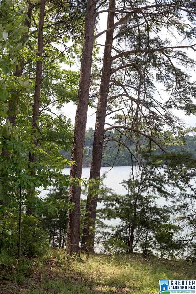 195 Co Rd Lot, Crane Hill, AL 35053 (MLS #821511) :: Brik Realty