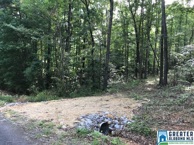 Beaver Ridge Cir 18+/- Acres, Ashville, AL 35953 (MLS #823574) :: Williamson Realty Group