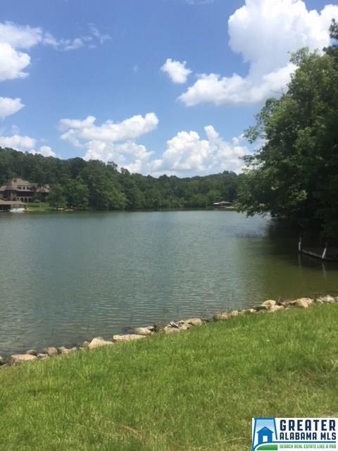 Deerwood Lake Dr #26, Harpersville, AL 35078 (MLS #824061) :: Brik Realty