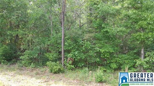 Riverview Cir #52, Cropwell, AL 35054 (MLS #824391) :: LIST Birmingham