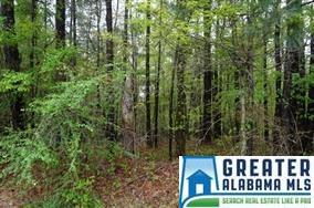 31 Dogwood Dr 28 & 29, Calera, AL 35040 (MLS #824517) :: Gusty Gulas Group