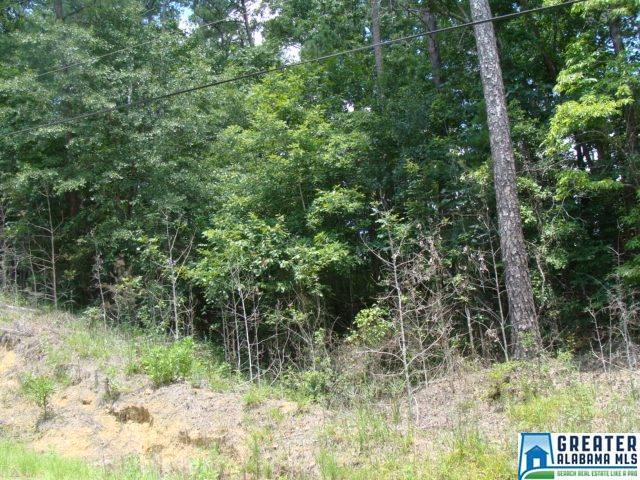 LOT 9 Woodland Lake Dr 9 AND 51, Mccalla, AL 35111 (MLS #825739) :: Josh Vernon Group