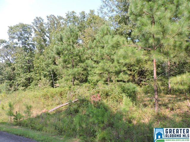 Brookwater Pointe #31, Wedowee, AL 36278 (MLS #826068) :: Josh Vernon Group