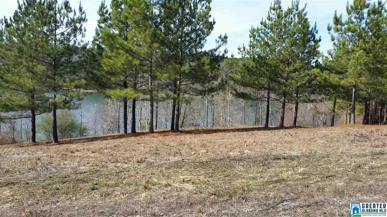 250 Co Rd 907 - Photo 1