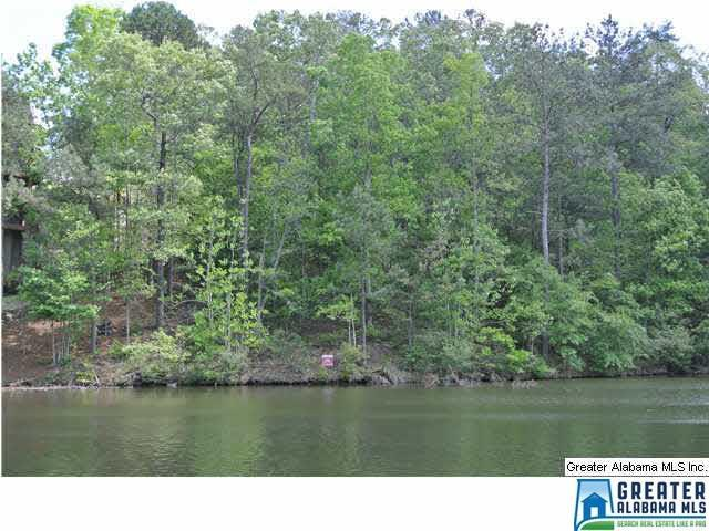 Lot 10 Brookwater Pointe Lot 10, Wedowee, AL 36278 (MLS #839658) :: Josh Vernon Group