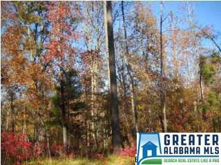 General Jackson Memorial Dr Lot 110, Sylacauga, AL 35151 (MLS #842372) :: LocAL Realty