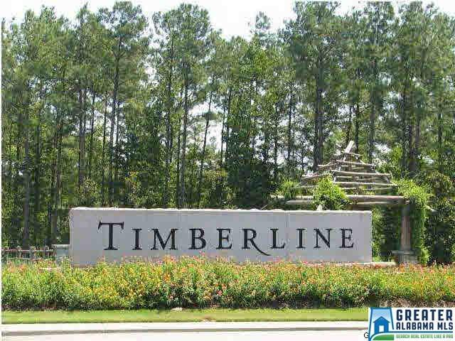 570 Timberline Trl #65, Calera, AL 35040 (MLS #842413) :: Josh Vernon Group