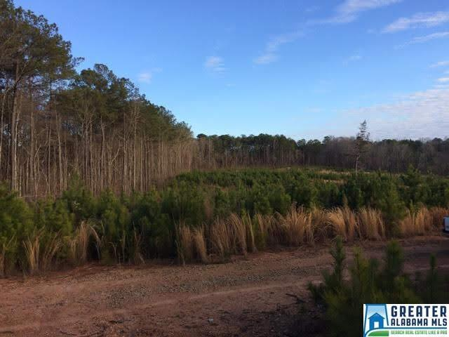 Coley Creek Rd 67 +/- Acres Co, Alexander City, AL 35010 (MLS #842518) :: Gusty Gulas Group