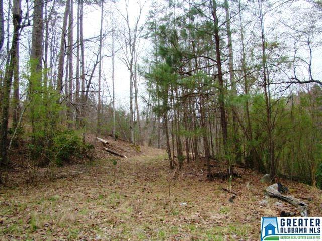0 Boozer Rd #3, Heflin, AL 36264 (MLS #844531) :: Gusty Gulas Group
