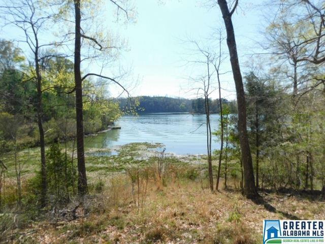 Water Ln #44, Quinton, AL 35130 (MLS #844802) :: Gusty Gulas Group