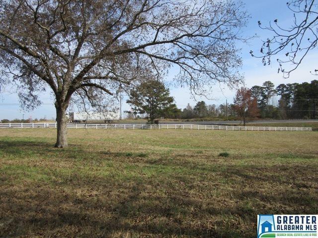 1 Lay Dam Rd, Clanton, AL 35045 (MLS #847662) :: Gusty Gulas Group