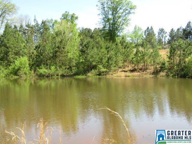10 Acres Co Rd 133 10+/- Acres Cou, Wedowee, AL 36278 (MLS #847746) :: Howard Whatley