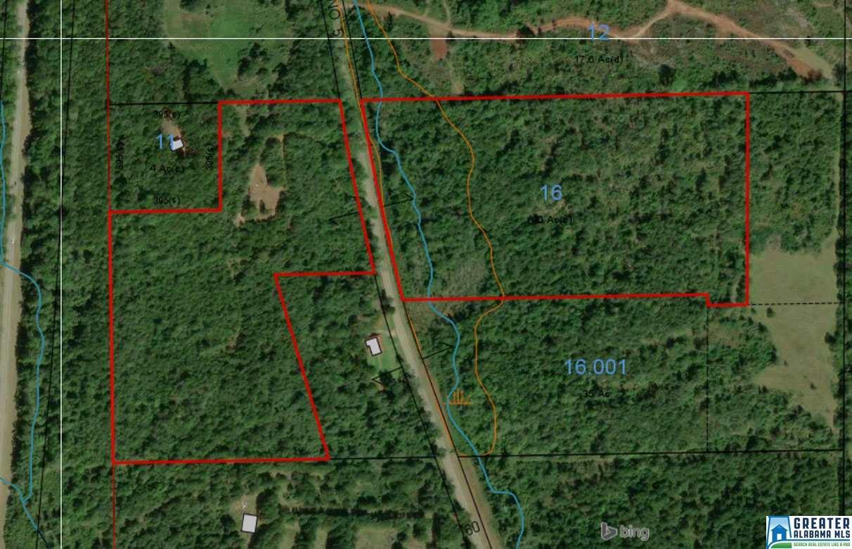 41.92 Acres Hwy 175 - Photo 1