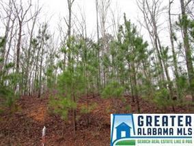 7996 Forest Loop #1, Pinson, AL 35126 (MLS #852106) :: Josh Vernon Group