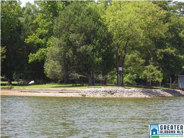16 Seddon Shores Dr #16, Pell City, AL 35128 (MLS #856212) :: Bentley Drozdowicz Group
