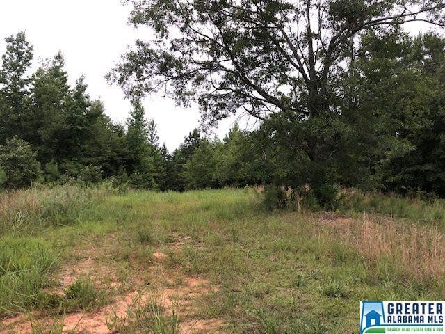 2175 Co Rd 238 - Photo 1