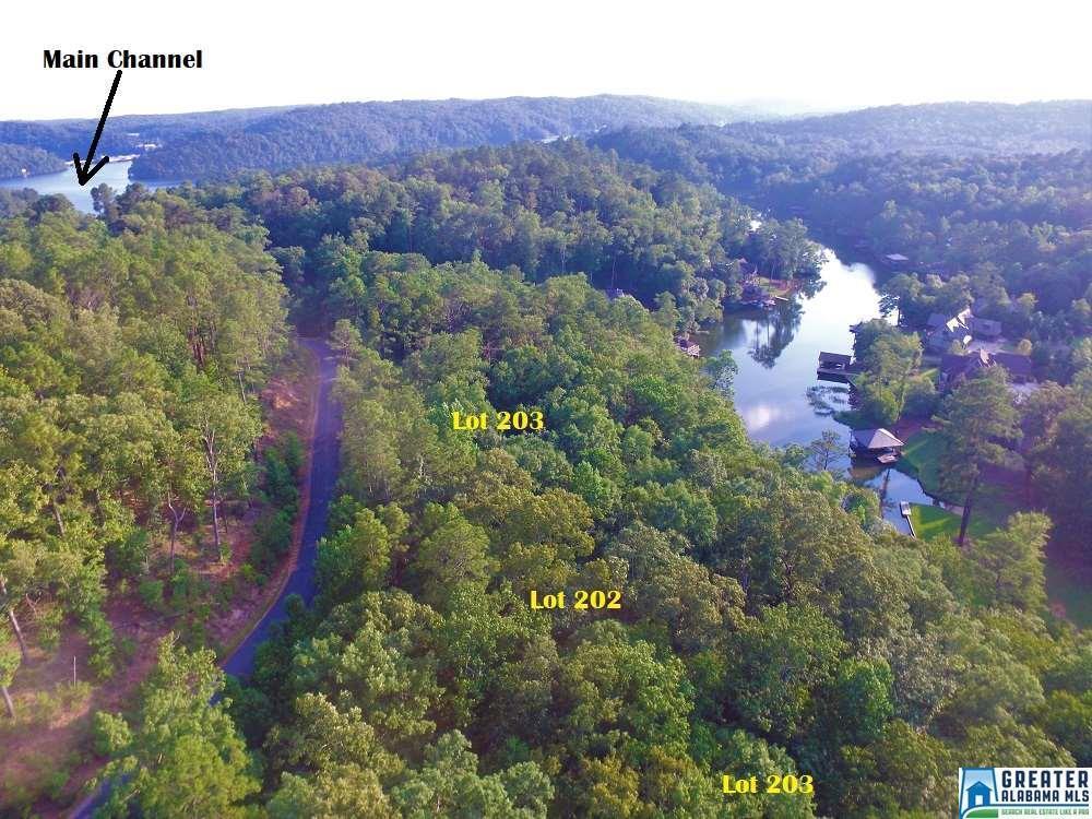 202 Big Y Cove Loop - Photo 1