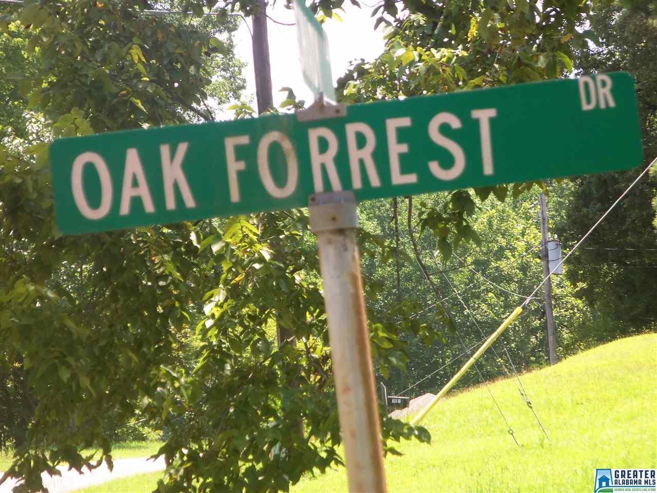 208 Oak Forest Dr - Photo 1
