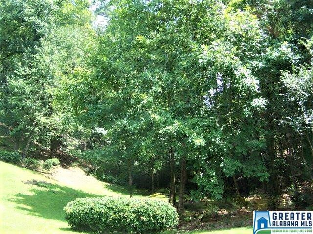 LOT 24 Raven Cir Lot 24, Hoover, AL 35244 (MLS #857060) :: LIST Birmingham