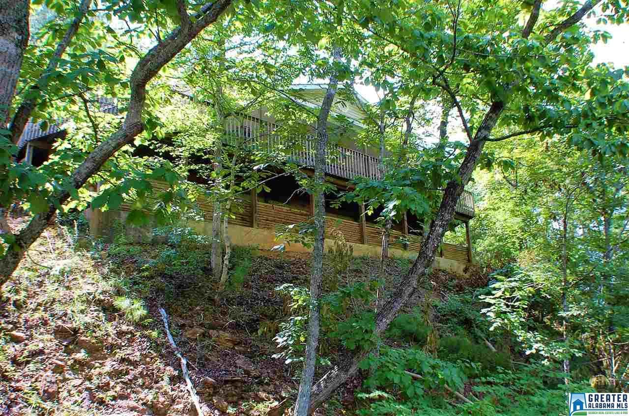 101 Indian Springs Rd - Photo 1
