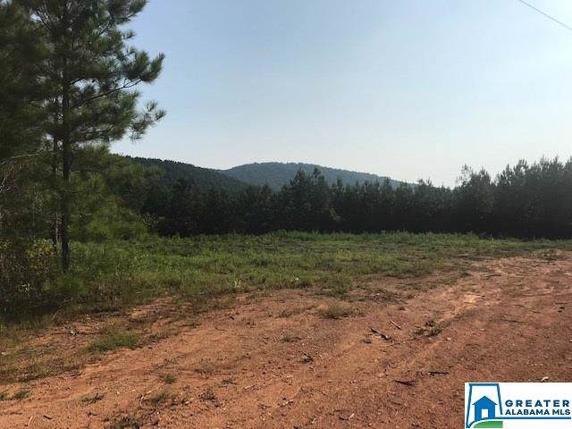2502 Co Rd 18 - Photo 1